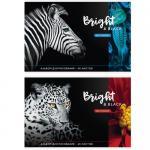 Альбом для рисования А4 40 л., на скрепке, «Животные, BRIGHT&BLACK»